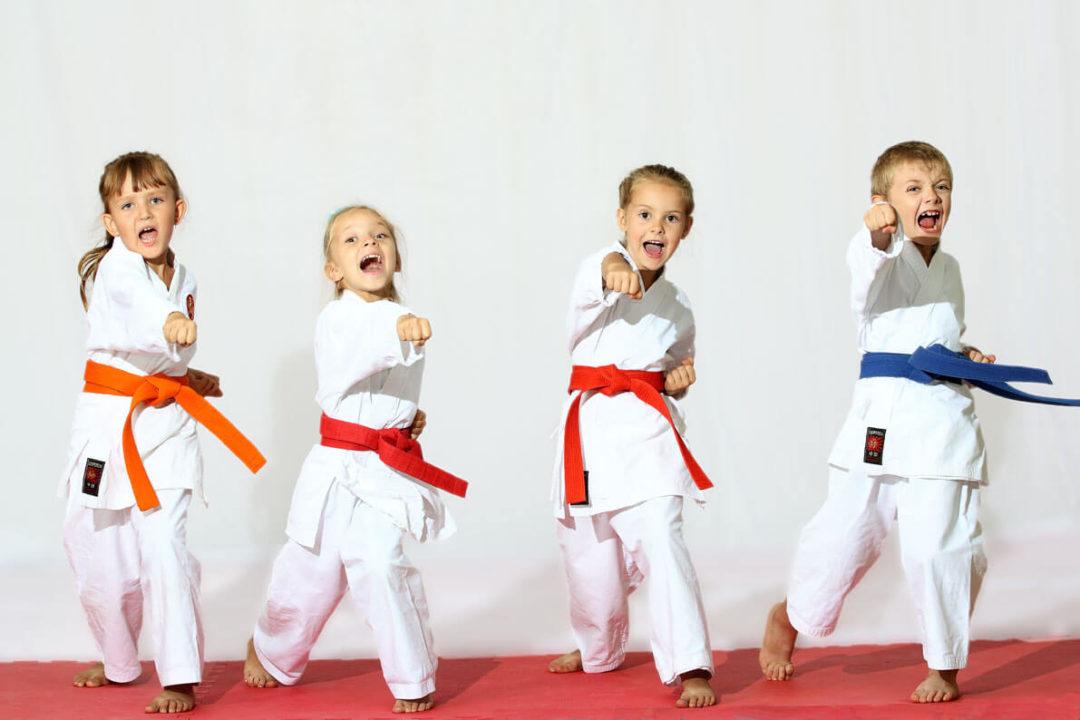mmsport-judo